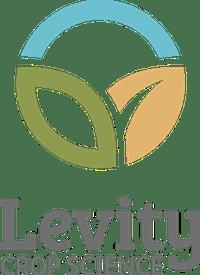 Levity logo colour copy