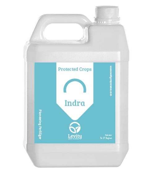 protected-indra