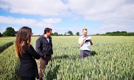 Levity CropScience targets UK cereal market with Elona