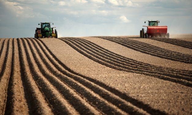Understanding Nitrogen – Key To Higher Potato Yields
