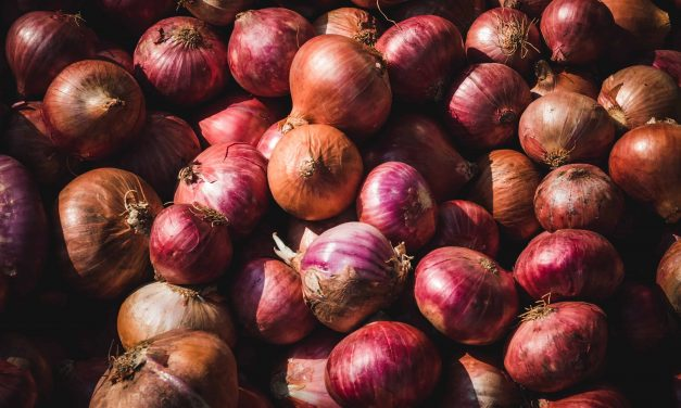 Know your Onions – are you using too much N?