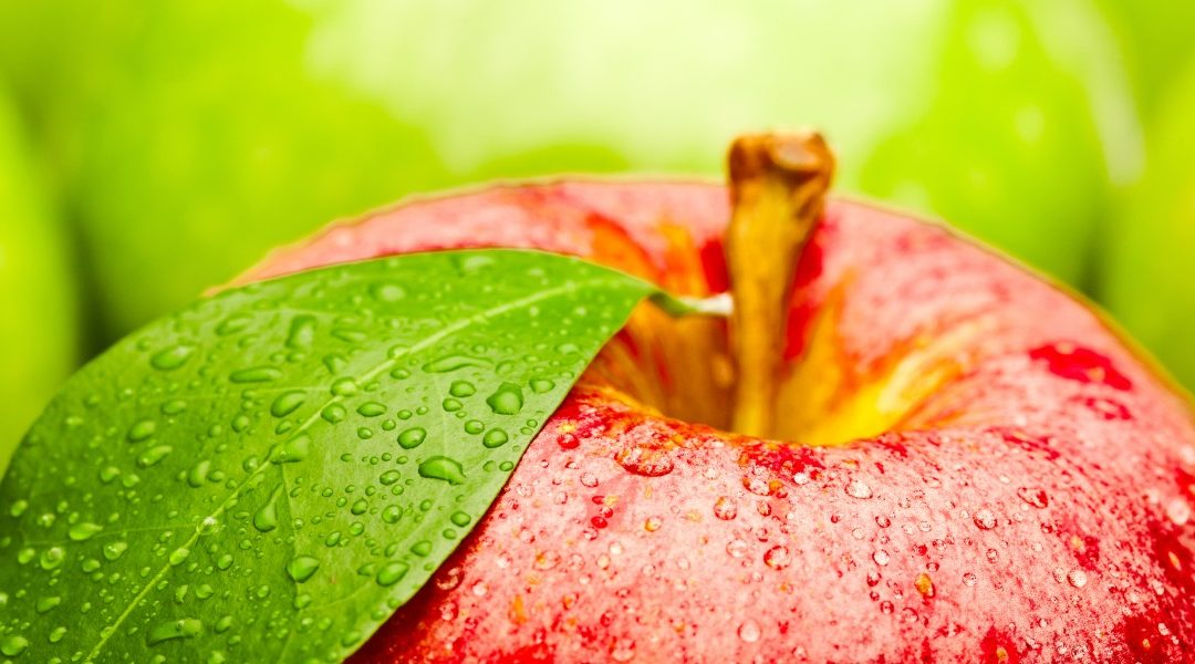 How to Reduce Bitter Pit in Apples