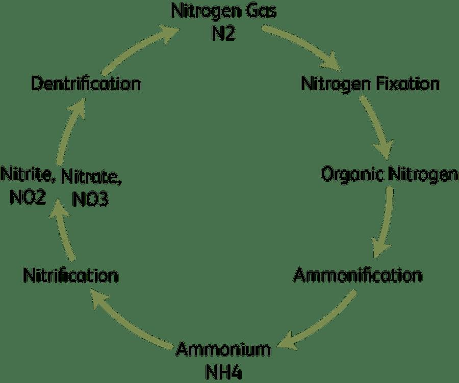 Indra Fertiliser Bottle